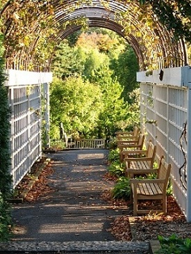Pennsylvania arboretum with wooden benches to sit on, a walkway and white fence