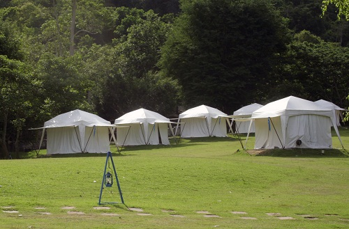 6 white tents at a campsite