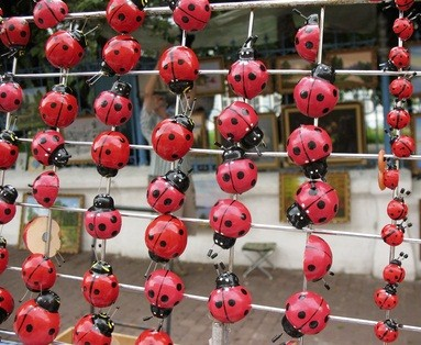 plastic lady bugs large and small at a PA festival