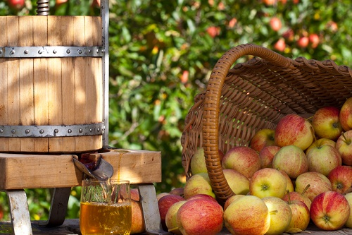 wooden barrel and glass of apple cider with a basket of apples beside