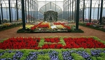flower show with red, green and purple flowers