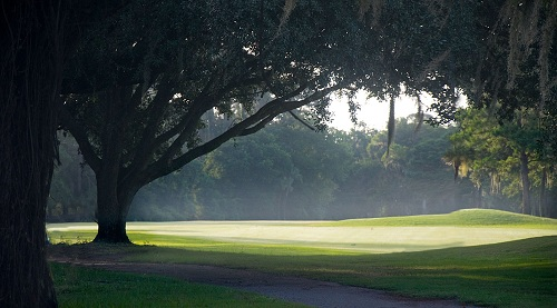 sunny and foggy course