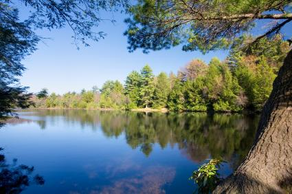 Hickory Run State Park White Haven PA, Carbon County PA green trees reflecting in the blue water with blue sky overhead