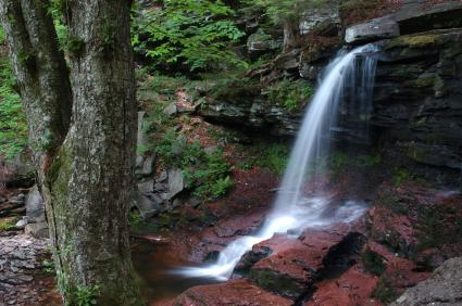 Ricketts Glen State Park Benton PA, Luzerne, Sullivan and Columbia County PA waterfall over rocks surrounded by trees