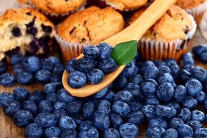 blueberries and blueberry muffins at a fesitval in PA
