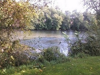 lake in pa in early October with sun shining off the water by trees