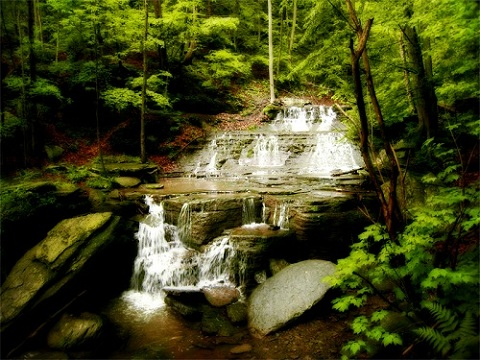 pa attractions pennsylvania grand canyon turkey falls