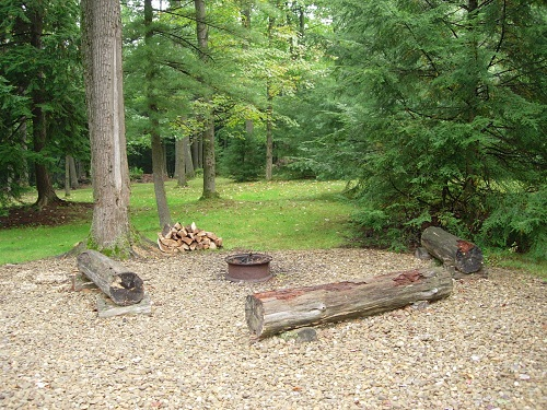 campfire area with logs for sitting and a firepit
