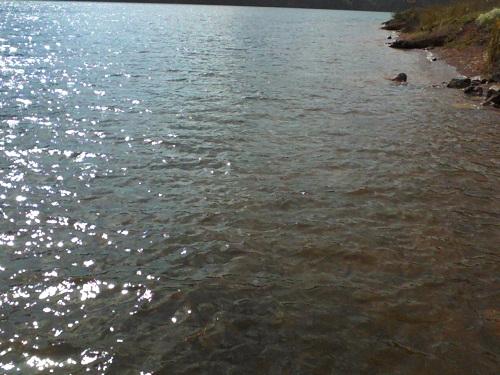lake water in the sun in Pennsylvania