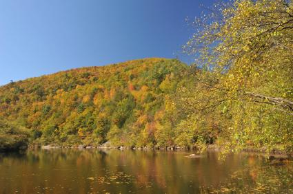 Lehigh Gorge State Park White Haven PA, Luzerne County PA, Carbon County PA gold and green fall leaves reflecting over a lake