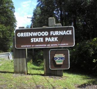 Greenwood Furnace State Parkrass