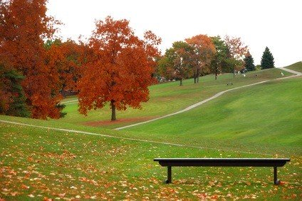 golf course in autumn