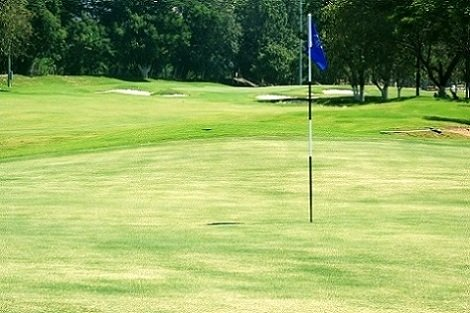 blue flag on the greens at a Pennsylvania golf course