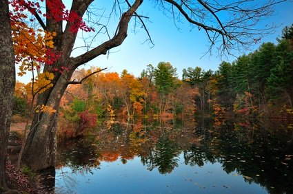 Pine Grove Furnace State Park with red, gold, orange and green trees reflecting in the water