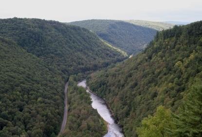 Pine Creek Gorge in Tioga State Forest in Wellsboro PA, Tioga County PA