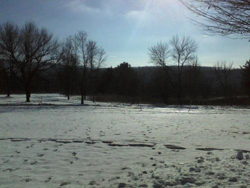 snow with footprints in the Poconos