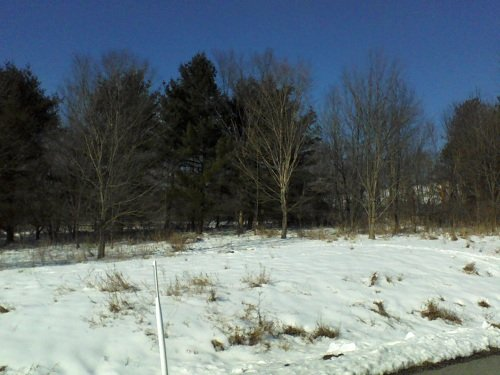 snow on the grass at a PA ski resort in January