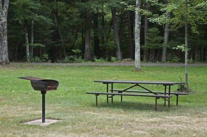 picnic table, grill on green grass with green trees in the background