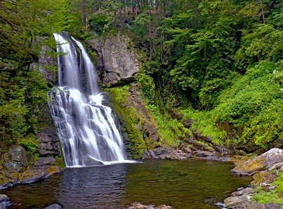 waterfall in the Pocono Mountains of Pennsylvania Bushkill Falls surrounded by green trees